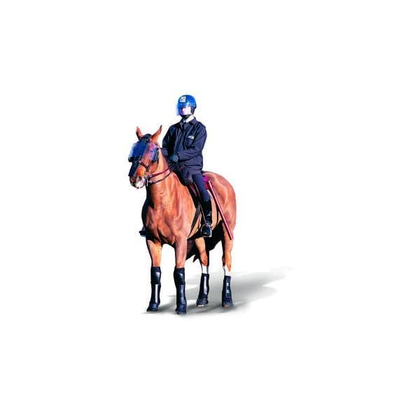 POLICE HORSE 1